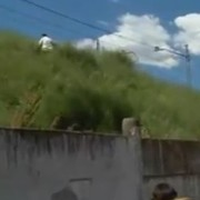 video-sha-matao-paco-1471435694884